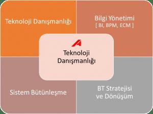 Teknoloji_Danismanligi